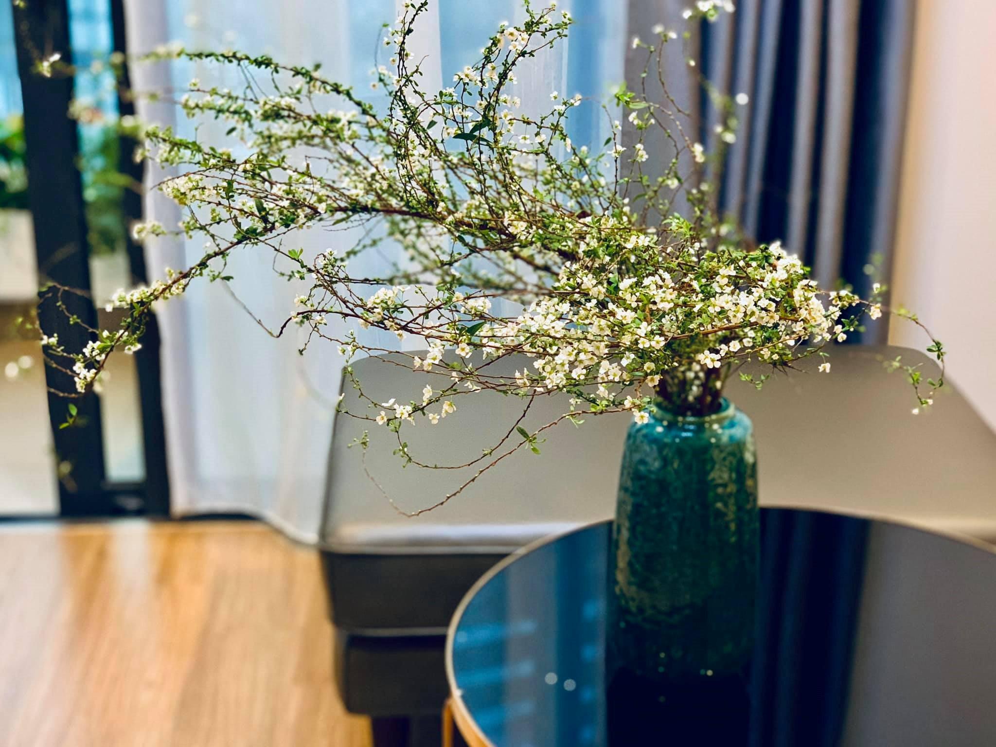 Những loại hoa nhập khẩu đang được săn lùng ráo riết dịp Tết 2020