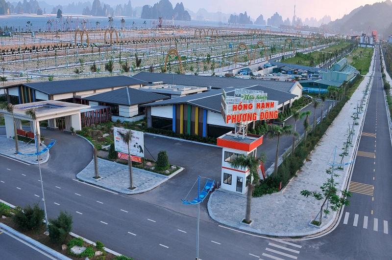 """Phương Đông Vân Đồn đón đầu cơ hội từ ngành du lịch """"không ngủ"""""""